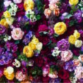 恵比寿・お花屋さんに併設されたカフェ。 花や緑に囲まれたリラックス時間。